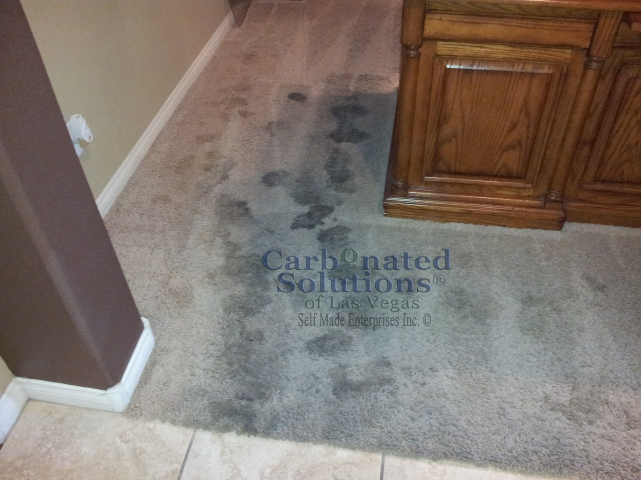 www.carbonatedsolutionsoflasvegas.com/Pet urine treatment by Carbonated Solutions carpet cleaners