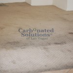 www.carbonatedsolutionsoflasvegas.com/Carbonated Solutions carpet cleaners can handle any level of soiling