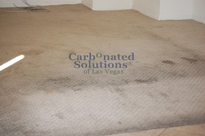 www.carbonatedsolutionsoflasvegas.com Carpet cleaning Las Vegas Carbonated Solutions