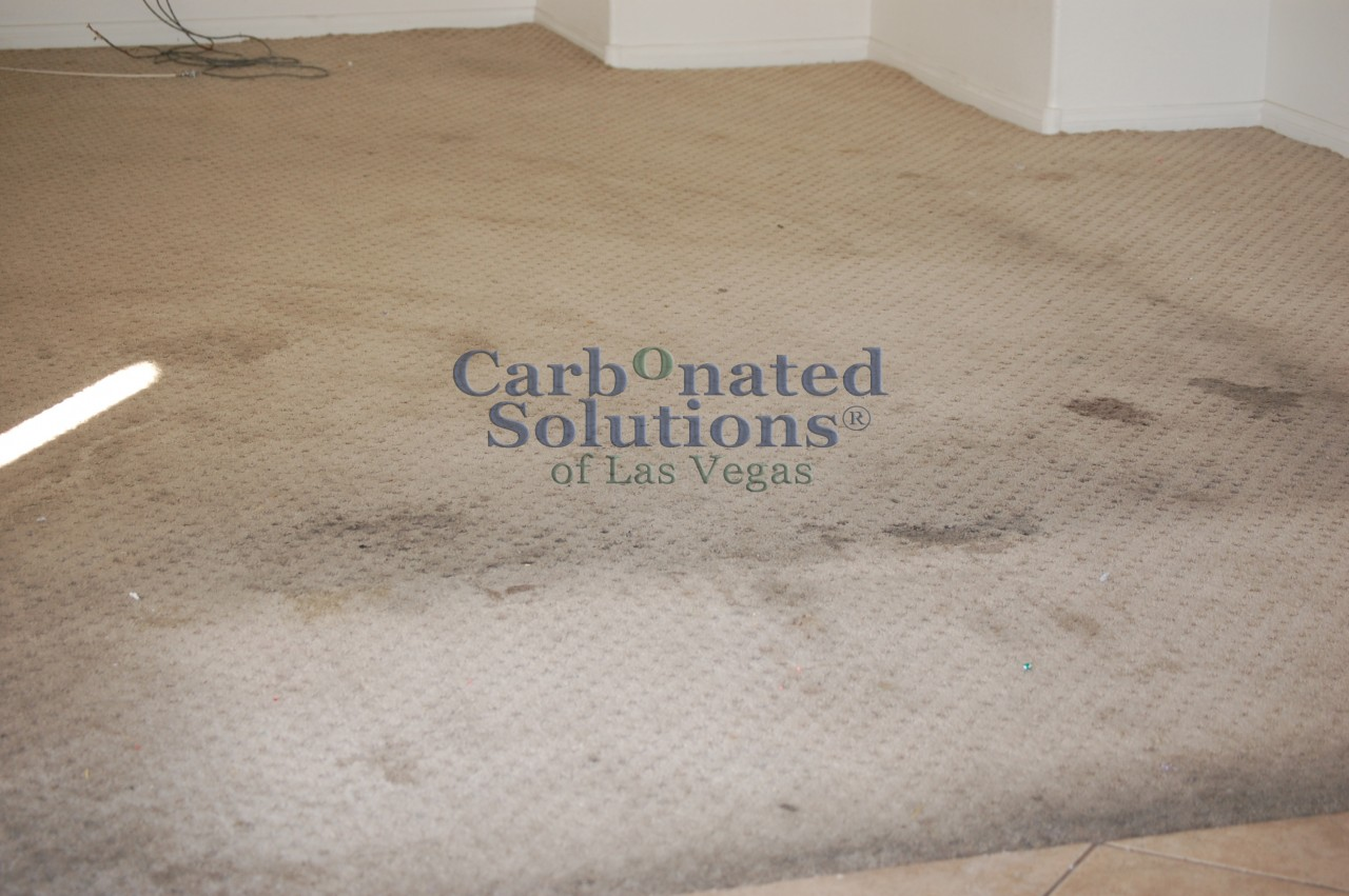 The Best 28 Images Of Rug Cleaning Henderson Nv Carpet