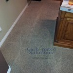 www.carbonatedsolutionsoflasvegas.com/Fresh clean carpets by Carbonated Solutions carpet cleaning