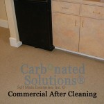www.carbonatedsolutionsoflasvegas.com/commercial-carpet-cleaning-las-vegas