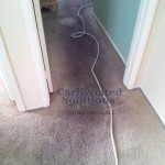 www.carbonatedsolutionsoflasvegas.com/No Residue Carpet Cleaning Las Vegas