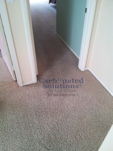 www.carbonatedsolutionsoflasvegas.com/Las vegas carpet cleaning Carbonated Solutions of Las Vegas
