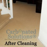 www.carbonatedsolutionsoflasvegas.com/ Carbonated Solutions Of Las Vegas Carpet cleaners