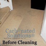 www.carbonatedsolutionsoflasvegas.com/Carbonated Solutions carpet cleaners
